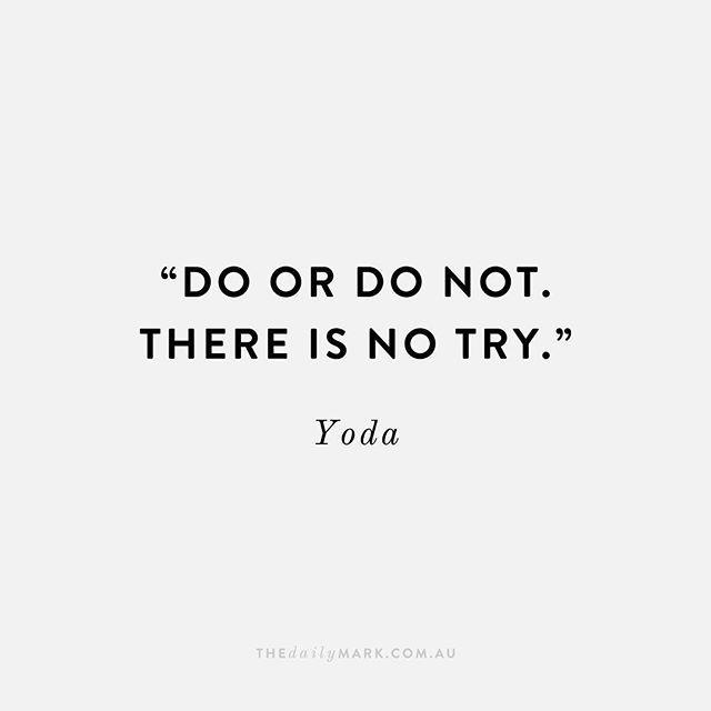 a yoda a day
